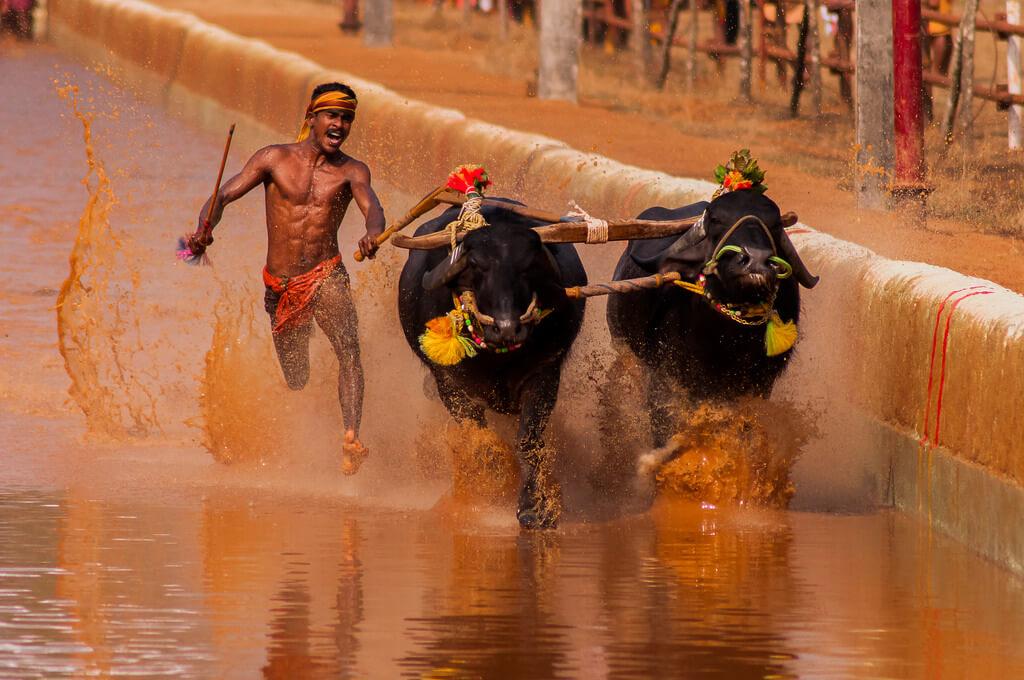 unusual-sports-india-kreedon
