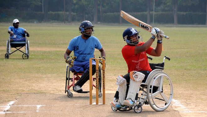 wheelchair cricket kreedon