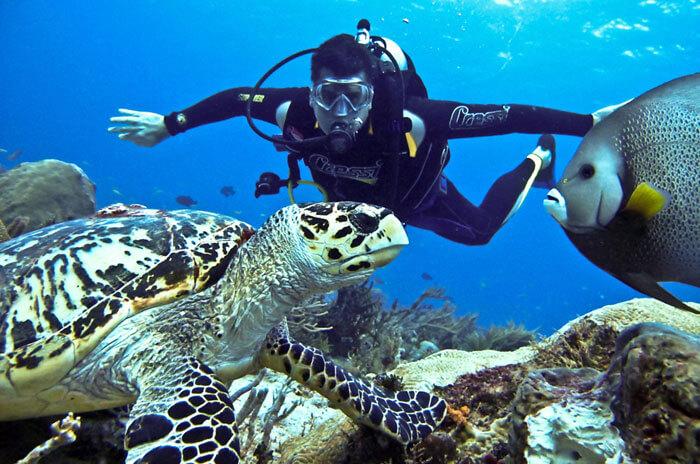 Scuba Diving - Adventure Sports