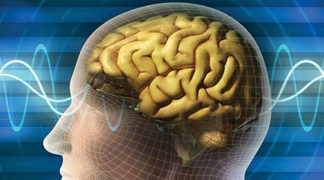 Cognitive Skills Kreedon