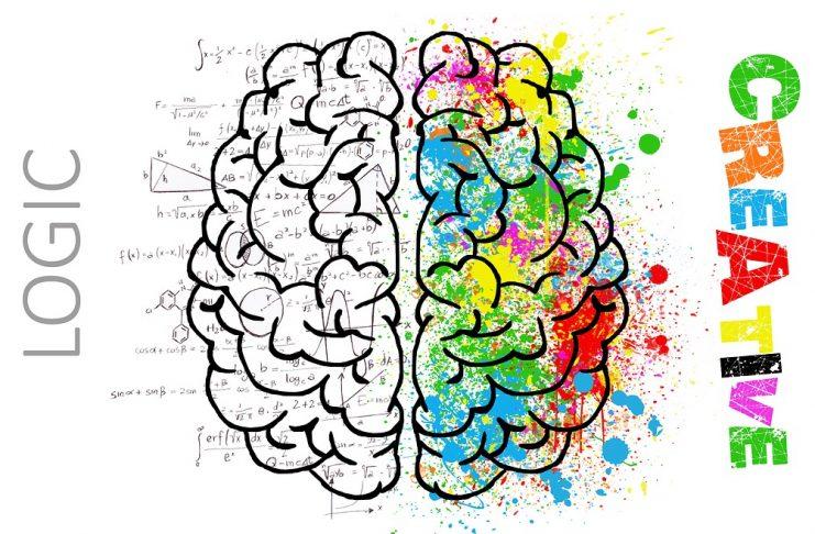 Both sides of the brain Kreedon