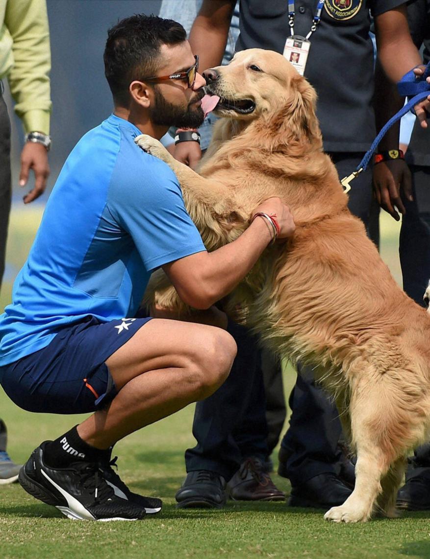 Virat with a cute dog Kreedon (Virat Kohli pics)