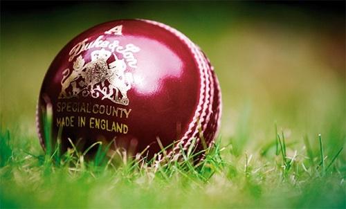 Dukes cricket ball