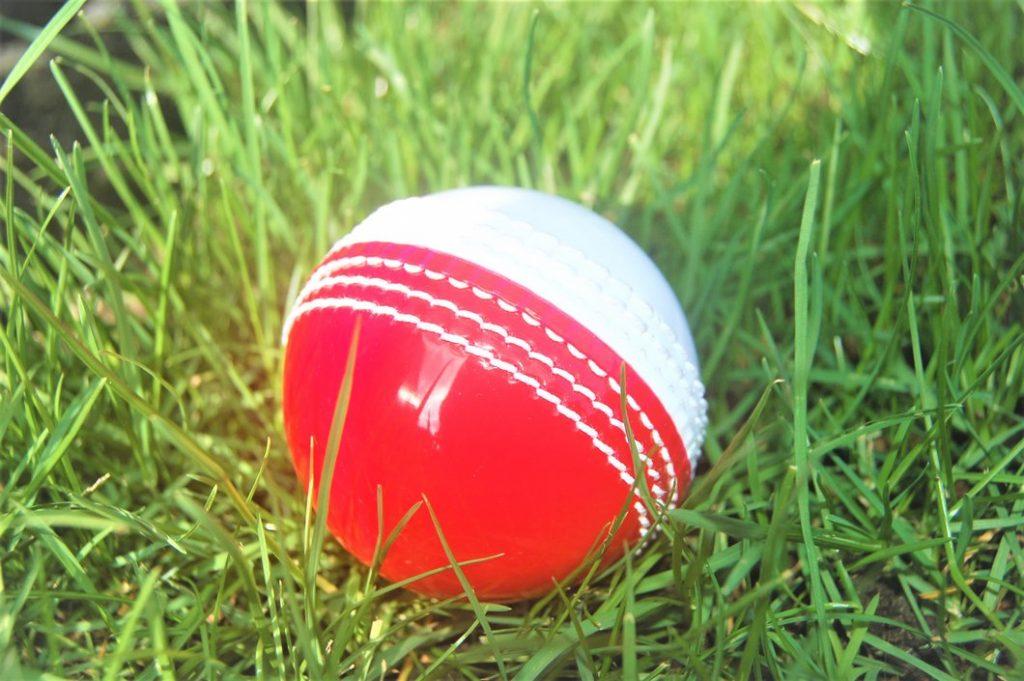 Soft synthetic cricket ball kreedon
