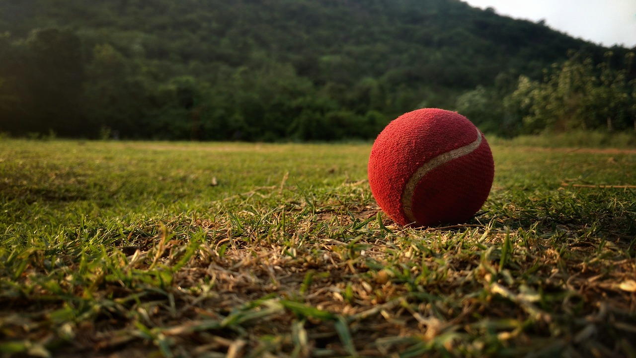 List of All the Types of Cricket Balls Used in the Game
