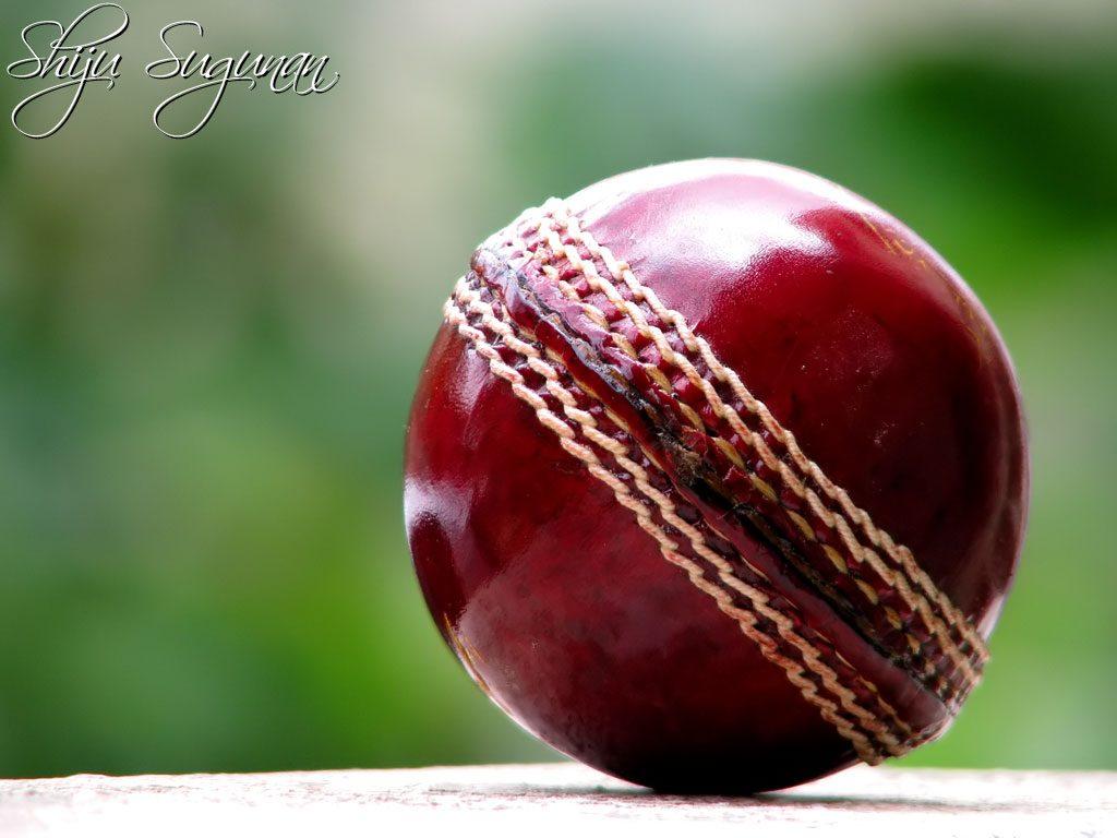 Types of cricket balls kreedon