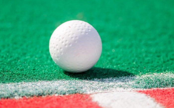 Types of cricket balls kreedon: hockey