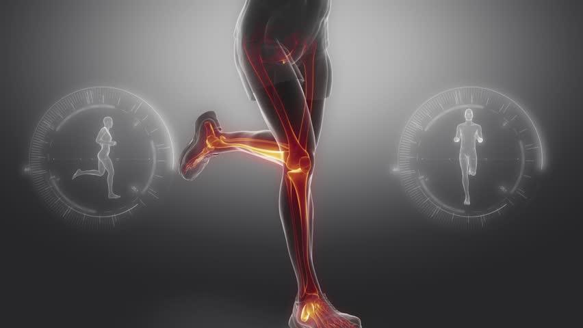 bones and joints running kreedon