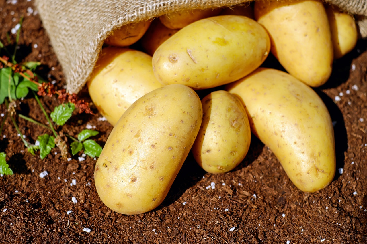 Potato KreedOn