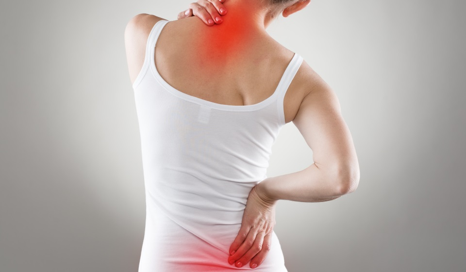 Neck and Low Back Pain KreedOn physical therapy