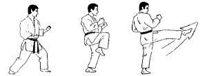 Karate front kick KreedOn