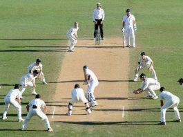 Names of cricket fielding positions   KreedOn